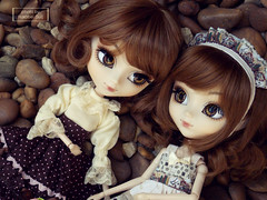 ~ Twins ~ (.~Sui~.) Tags: pullip groove lunatic queen twins mayu mio rewigged rechipped sepia doll