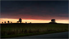 South Moravia Today, 6:40 AM (piontrhouseselski) Tags: cz moravia sun snunrise trees route morning