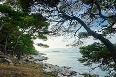 my favorite spot in Cavtat (PauPePro) Tags: balkan kroatien montenegro radltour slowenien cavtat sea meer coast kste