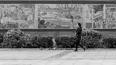Walking through history (Go-tea ) Tags: street urban city asia china yantai asian chinese canon eos 100d 50mm bnw bw black white blackwhite blackandwhithe old history dinasty empire outside outdoor people yantaishi shandongsheng chine cn fresco palace wall woman young walking glasses phone mobile boots cold dress alone reverse oposition movement modern
