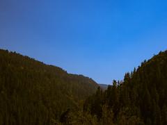 1609 Pickin in the Pines19 (nooccar) Tags: 1609 nooccar devonchristopheradams pickininthepines sept2016 september bluegrass bluegrassfestival contactmeforusage devoncadams dontstealart photobydevonchristopheradams