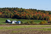 A big farmstead in Quyon, Québec (Ullysses) Tags: quyon québec canada ferme farm autumn automne municipalityofpontiac pontiac fallcolors northonslow