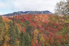 The peak of Mont Tremblant in its autumn splendour (beyondhue) Tags: laurentians laurentides mont tremblant mountain fall autumn beyondhue peak color landscape tree leaf leaves quebec woods forest top red orange yellow