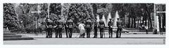 On duty (alamond) Tags: honor wreath ismailibnahmad dushanbe tajikistan bw blackandwhite travel monochrome canon 7d markii mkii llens ef 1740 f4 l usm alamond brane zalar guard