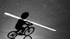 bicycle jousting (keith midson) Tags: bicycle shadow line linemarking carpark utas hobart tasmania cycle