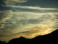 Abendhimmel (webalpen) Tags: nordamerika usavereinigtestaatenvonamerika kalifornien sonne sonnenuntergang vogel tier wolkenhimmel umwelt wolken landschaft