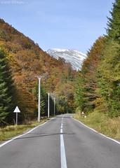 DSC_1041 (VictorSZi) Tags: romania autumn toamna october octombrie transfagarasan explore travel