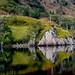 ScotlandAutumn16_49