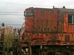 ForlornRR101611c (homeboy63) Tags: fall 2011 humboldt eureka decrepitude