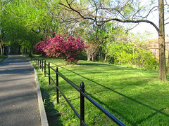 Beautiful Spring Evening in Morningside Park (jschumacher) Tags: nyc morningsidepark