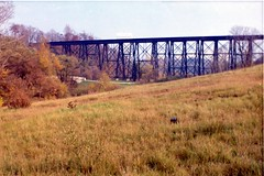 Train Trestle (mcwidi_2) Tags: trestle bridge toronto ontario train kodak no 116 2a trainbridge torontoontario traintrestle kodakno2a