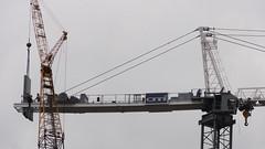 Gruas 07925 (Omar Omar) Tags: california usa la losangeles construction downtown crane construccion downtownla grua dtla californie usofa downtownlosangeles losangelesca losángeles craneassembly losángelescalifornia constructinocrane