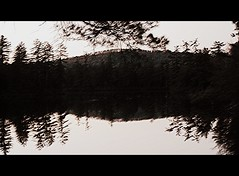 Lake At Dusk. (dccradio) Tags: trees ny newyork reflection tree nature natural scenic adirondacks upstateny duane longpond northernny lakeduane