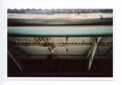 Tin roof. (myamericana.us) Tags: roof light bulb tin lomo lca lomography wideangle 20mm zonefocus