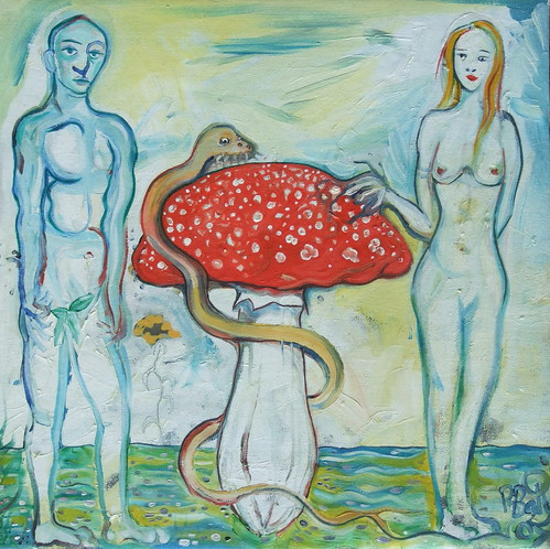 "adam eve and amanita • <a style=""font-size:0.8em;"" href=""http://www.flickr.com/photos/92921384@N07/8829839252/"" target=""_blank"">View on Flickr</a>"