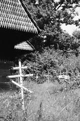 10610032 (Pavel Krej) Tags: zakarpattia ilford