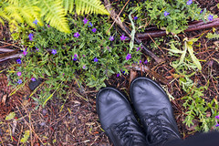 (xanocaa) Tags: flower plants nature spring summer rain feet boots black blue pink purple green brown beige yellow bush garden forest wild hiking travel traveler traveling me leaf leaves branch branches trees tree beautiful calm alexandra fernandes leiria marinha grande caldas da rainha esadcr esad canon eos 60d 50mm color horizontal colors colorful people natural light