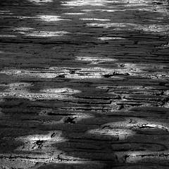 Walking Montreal 012 (noahbw) Tags: d5000 nikon oldmontreal vacation abstract blackwhite blackandwhite bricks bw city curb landscape light monochrome noahbw quiet reflection road square street summer water wet dark lowlight