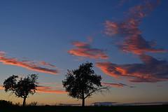 Sunset (Sandsteiner) Tags: sonnenuntergang sunset sommer wolken himmel elbsandsteingebirge sandsteiner