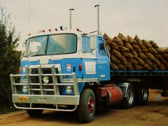 photo by secret squirrel (secret squirrel6) Tags: craigjohnsontruckphotos international trucking potatoes cabover coe classic heavy thorpdale