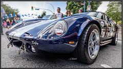 Shelby Daytona Lofty (Maclobster) Tags: shelby daytona lofty poco show shine port coquitlam car cobra ford