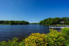 242/366 - Big Blue Sky (Ravi_Shah) Tags: arrowhead poconos sony cy365 lake potd a7ii