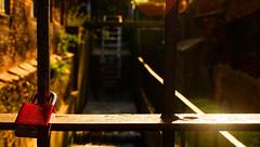 Gdansk's water mill (chrysaor1234) Tags: lock sun sunlight water mill watermill gdansk yellow orange green lensflare spiderweb poland polska