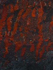 Collenia undosa (J Gilbert) Tags: colleniaundosa stromatolite digitate maryellen jasper mine saintlouiscounty mn biwabik formation minnesota precambrian fossil slab