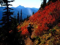 White Chuck Mountain and red meadows, North Cascades (jaisril) Tags: greenmountain northcascades washingtonstate