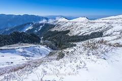 Harry_30983,,,,,,,,,,,,,,,,,Winter,Snow,Hehuan Mountain,Taroko National Park,National Park (HarryTaiwan) Tags:                 winter snow hehuanmountain tarokonationalpark nationalpark     harryhuang   taiwan nikon d800 hgf78354ms35hinetnet adobergb  nantou mountain