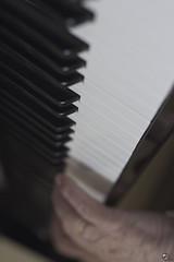 Variaciones Goldberg 81. (elojeador) Tags: piano tecla negra blanca mano manodemsico manodepap teclado anillo imperial amontillado glenn gould glenngould despusdelgranvino elojeador