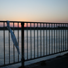 Railing against the litter (Andrew Malbon) Tags: railings fence pier handrail solent eastney langstoneharbour tide lowtide sunrise autumn autumncolour depthoffield shortdepthoffield shore sun leica m9 leicam9 rangefinder manualfocus manual silence dawn dawnlight solitary urbex