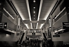 Terminal. (Wilickers) Tags: canon eos 60d travel photography monochrome architecture terminal airport vignette light people daily signs building depth contrast