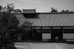 Nara B/W (5) - Taking a Rest (Patrick Vierthaler) Tags:   todaiji toudaiji nara park japan kansai bw monochrome