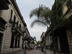 "Montevideo: la vieille ville <a style=""margin-left:10px; font-size:0.8em;"" href=""http://www.flickr.com/photos/127723101@N04/29750803625/"" target=""_blank"">@flickr</a>"