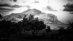 Romagnolo mon amour (Angelo Trapani) Tags: palermo romagnolo spiaggia lungomare costasud recupero abbandono degrado alberi mare montagna montepellegrino