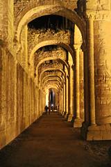 IMG_2269_DxO (douglasjarvis995) Tags: abbey night yorkshire nationaltrust ruin evening light golden travel flikrtravelaward old religious