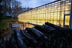 Fridheimer Tomato Farm (CC Chapman) Tags: iceland friheimar greenhouse cultivation centre