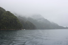 Heathens (Alison Claire~) Tags: puertovaras chile southamerica todoslossantoslake petrohu lake water river grey waves calm landscape waterscape beautiful nature serene boat canoneos canon canoneos600d 600d rebelt3i fog mist misty foggy clouds cloud atmosphere atmospheric sky reflection island plant flora natural seascape