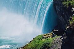 Niagara Falls (Adam Klekotka) Tags: niagara falls niagarafalls canada nature