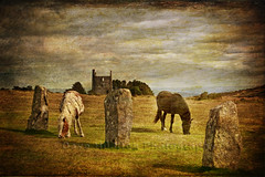 Concerto for Two (Dave Hilditch Photography) Tags: horses standingstones ruins cornwall mines moors stonecircles bodminmoor minions coth theworldwelivein thehurlers abigfave tatot magicunicornverybest magicunicornmasterpiece ruby5