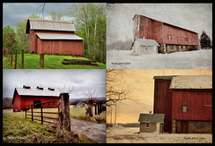 Barn Typology (Sparrow Girl- Will I EVER Catch Up?) Tags: rural buildings outdoors countryside country barns senseofplace onethousandgifts katsloma