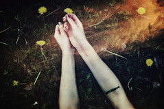 (emmakatka) Tags: summer flower grass yellow tattoo hands arms overlay dandelion wrist scar forearm dontpanic