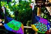 Arte em Minas (Nelson N M) Tags: canon cores galinha minas gerais arte matozinhos artesanato neo artes cor t3i galinhas brasilemimagens nelsonnunesmeira nelsonnmeira nmeira