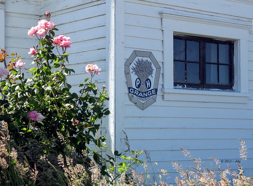 Pink Roses, Old Fashioned Grange Sign & Window