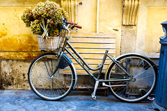 (alliance1) Tags: flowers italy rome color bicycle 2014 fujix100s