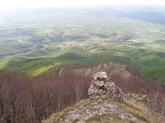32938065 Mladen Paunovic