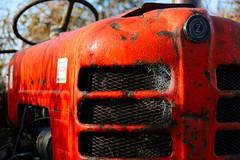 tractor in dauw