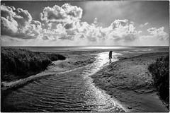 lost himself in loneliness (ingrid.lowis) Tags: monochrom bw föhr wadden wattenmeer