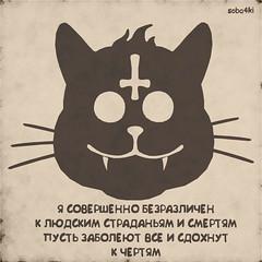 37 (guiess) Tags: fun cat phrase rude draw